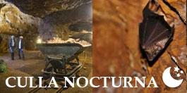 Culla Nocturna
